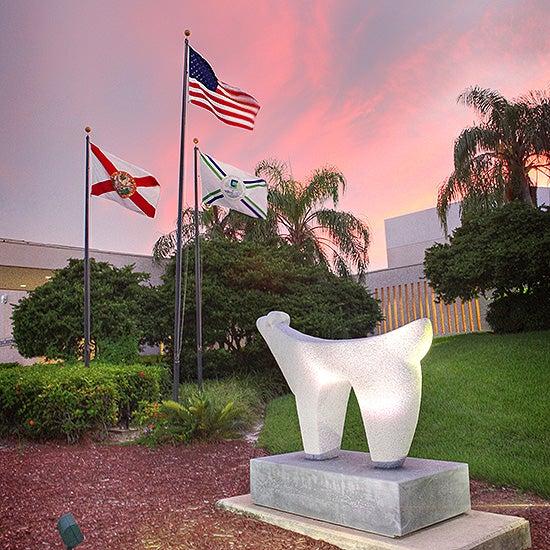 Coral-Springs-Gallery-Thumb.jpg